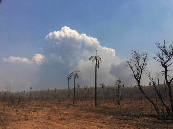 A general view of the fires in the